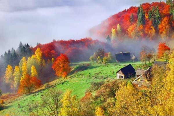 8 лучших идей для осенних путешествий по Украине