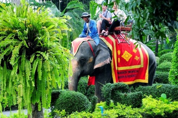 Таиланд: 10 причин приехать и влюбиться