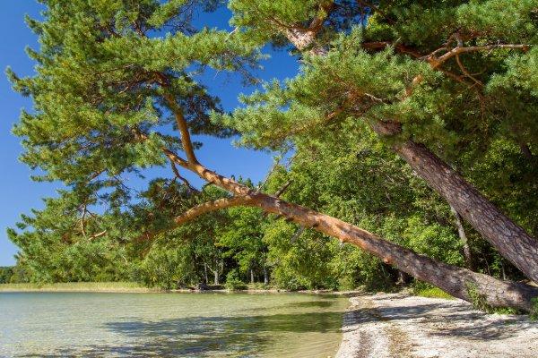 Шацкие озера: почему тебе стоит там побывать