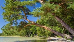 Шацкие озера: почему тебе �тоит там побывать