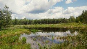 6 місць Східної України, в яких варто побувати