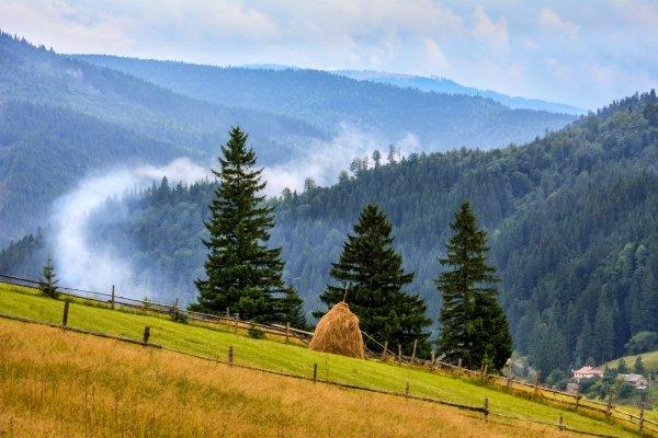 12 фактов про Карпаты, которые тебя удивят
