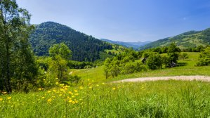 Маршруты из Татарова: что посмотреть в Карпатах