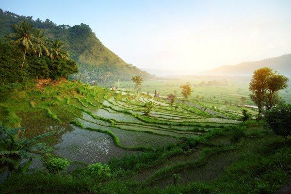 Индонезия продлила запрет на въезд иностранцам