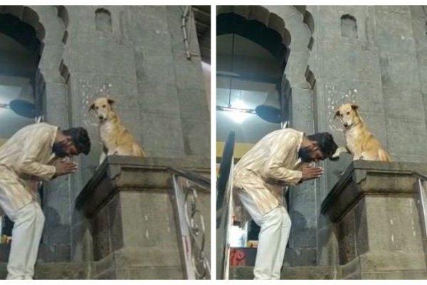 В Индии пёс благословляет верующих