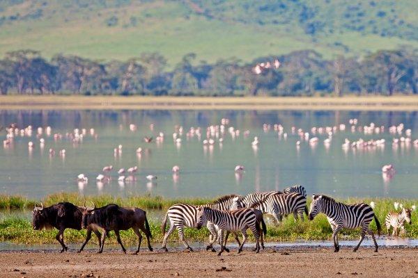 Танзания ужесточает правила въезда в страну