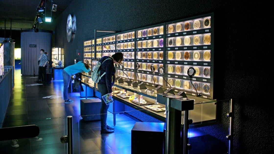 Музей Micropia