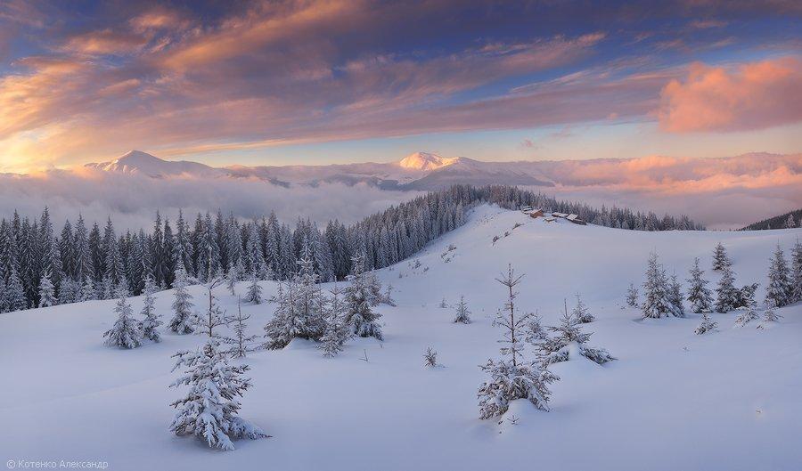 Зимний пейзаж в Украине