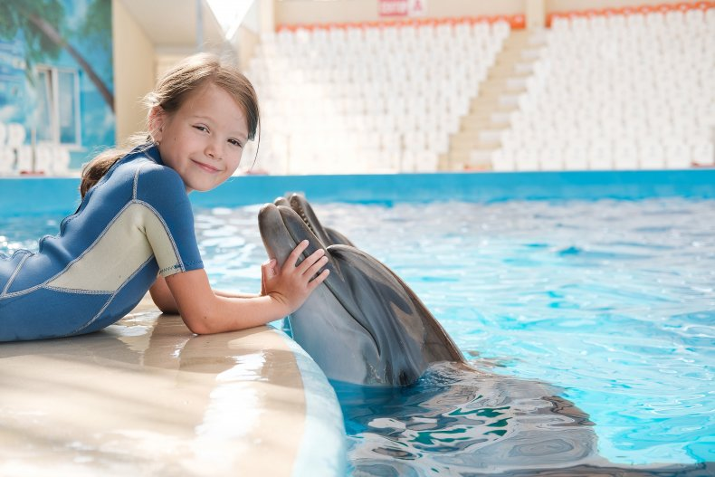 Дельфинарий для детей в Канкуне