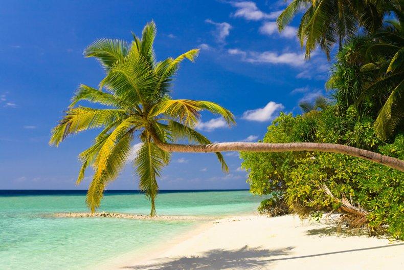 Когда лучше ехать в Мальдивы - сезон отдыха в Мальдивах